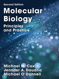 Molecular Biology - Principles and Practice 2/E